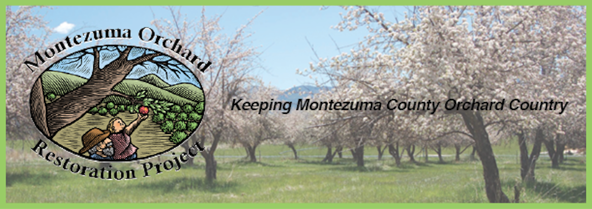 Montezuma Orchard Restoration Project